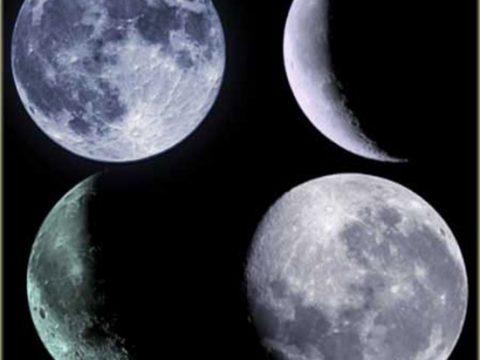 Кисти «Луна»