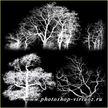 """Кисти """"Деревья 1"""""""