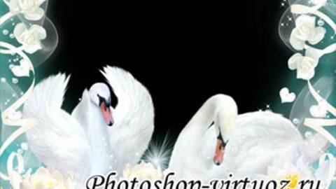 Рамка «Белые лебеди»